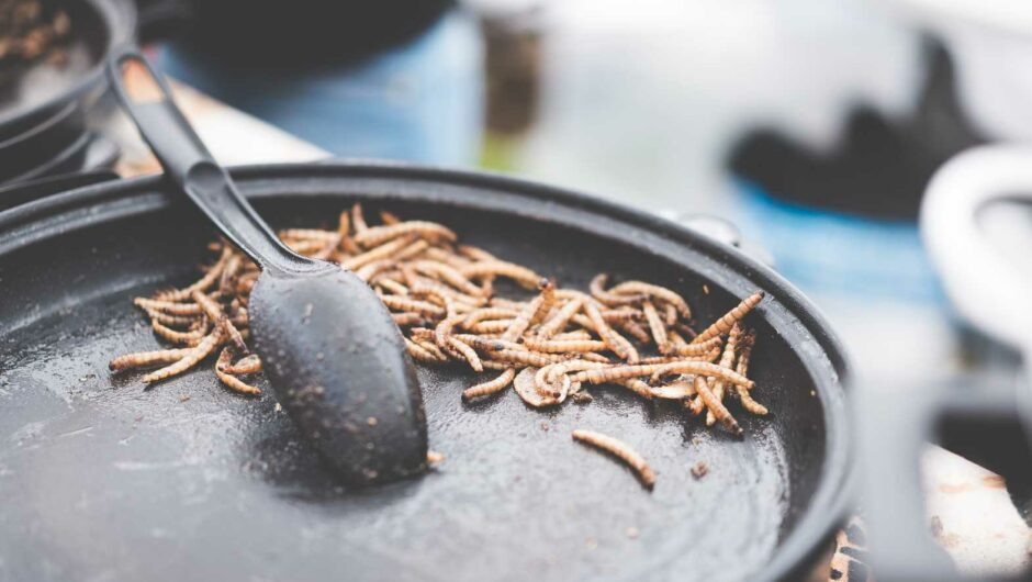 Fried Caterpillars Traditional Exotic Asian Food